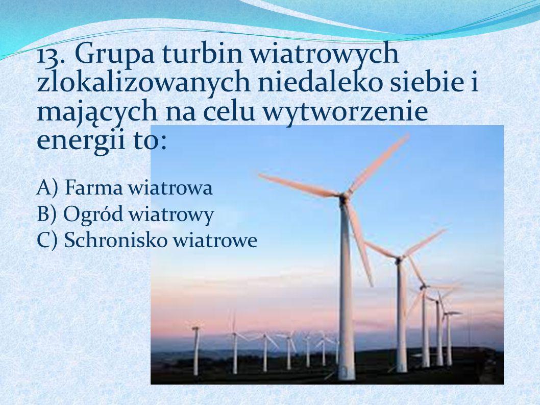 13. Grupa turbin wiatrowych zlokalizowanych niedaleko siebie i mających na celu wytworzenie energii to: