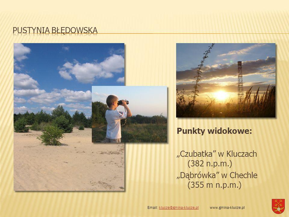 """PUSTYNIA BŁĘDOWSKA Punkty widokowe: """"Czubatka w Kluczach (382 n.p.m.) """"Dąbrówka w Chechle (355 m n.p.m.)"""