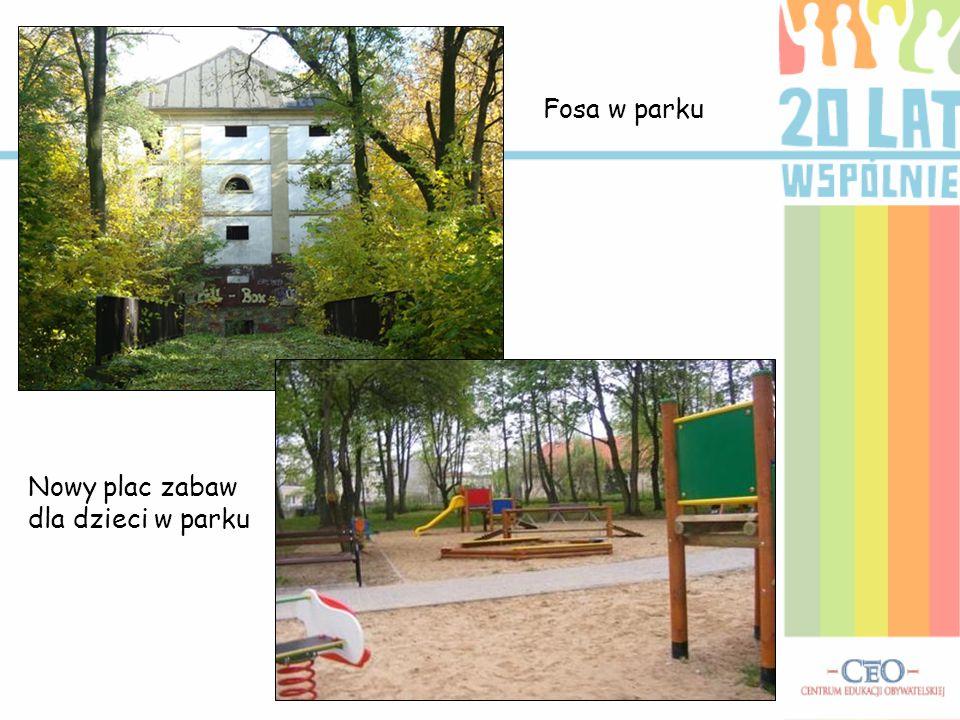 Fosa w parku Nowy plac zabaw dla dzieci w parku