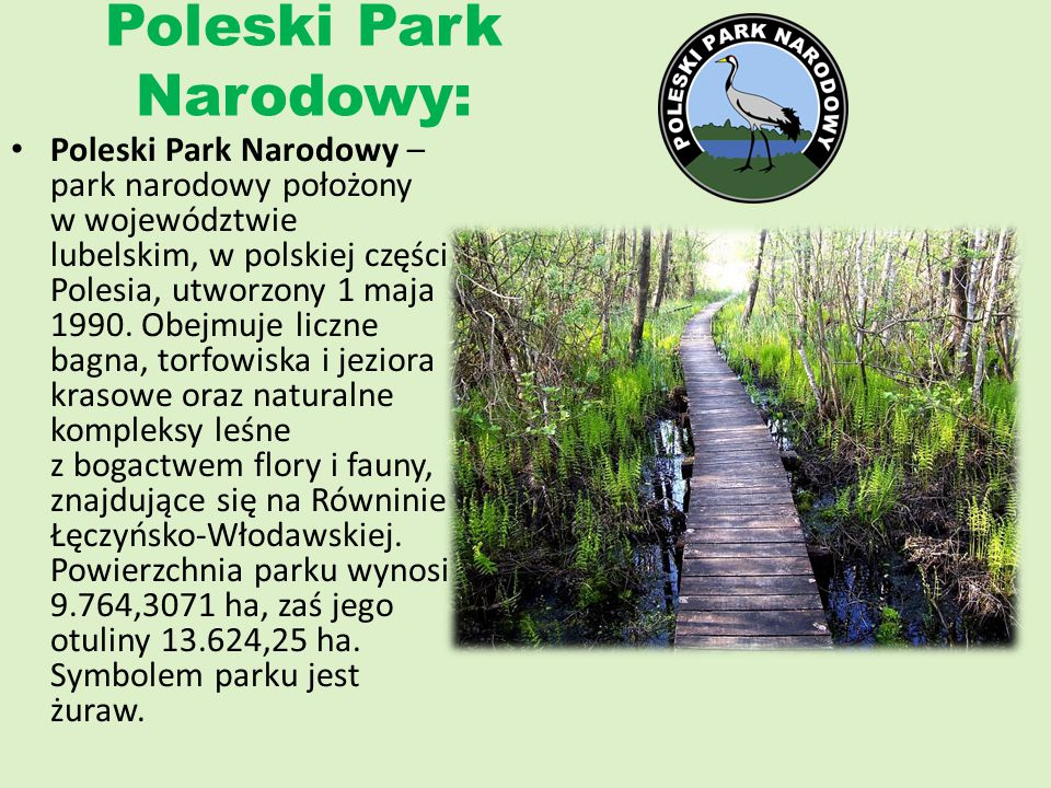 Poleski Park Narodowy: