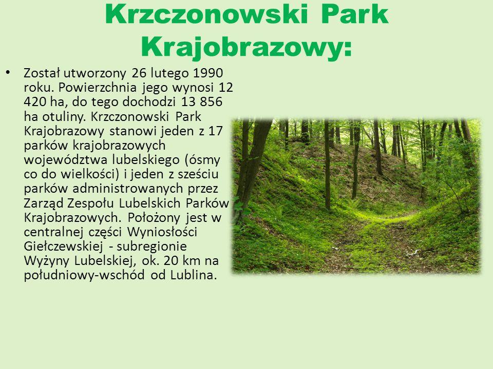 Krzczonowski Park Krajobrazowy: