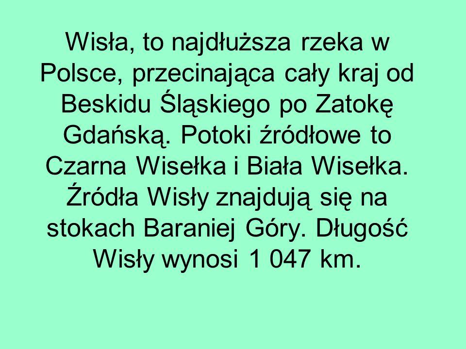 Wisła, to najdłuższa rzeka w Polsce, przecinająca cały kraj od Beskidu Śląskiego po Zatokę Gdańską.