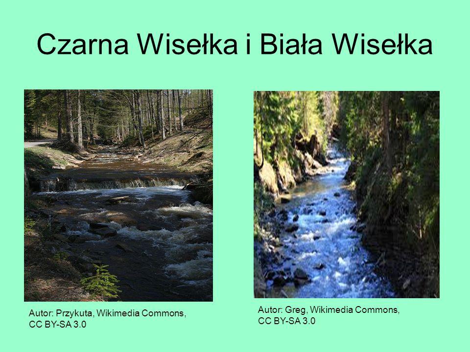 Czarna Wisełka i Biała Wisełka