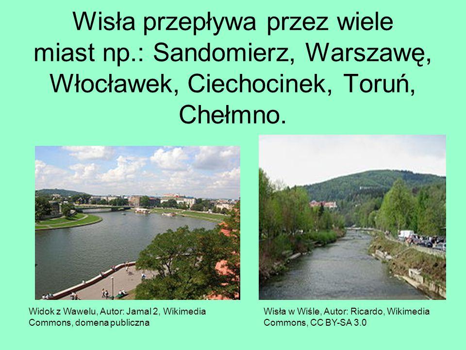 Wisła przepływa przez wiele miast np