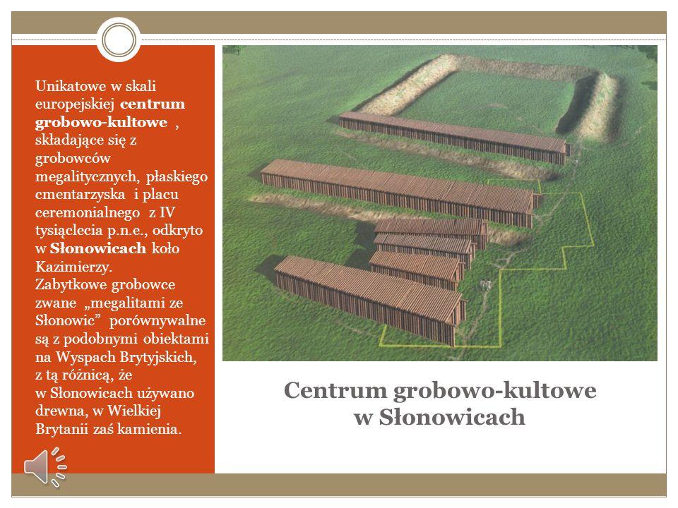 Centrum grobowo-kultowe w Słonowicach