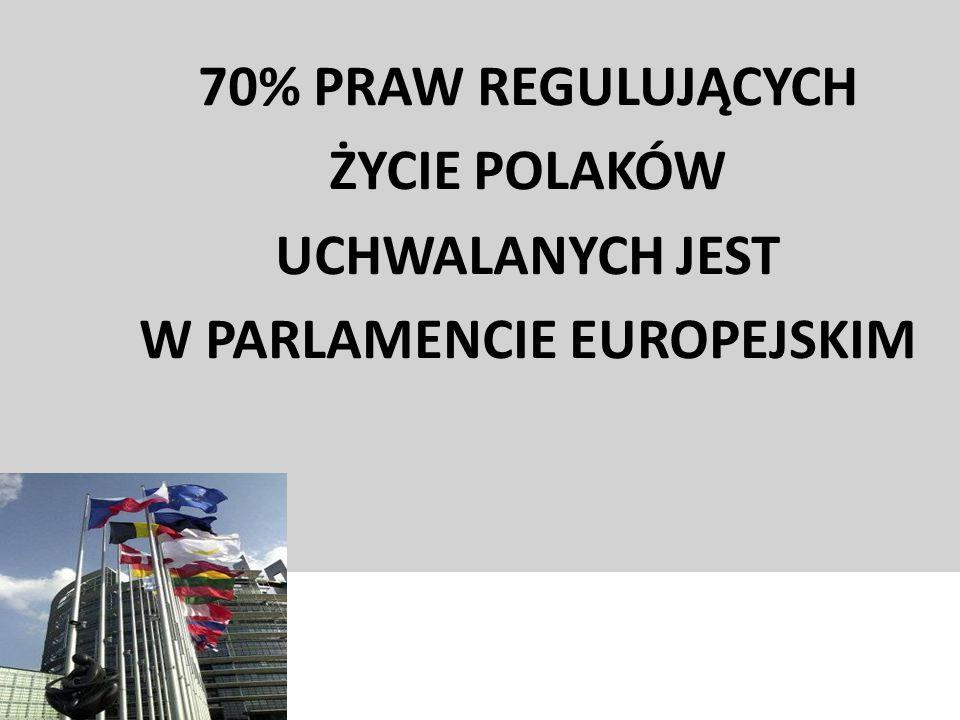 W PARLAMENCIE EUROPEJSKIM