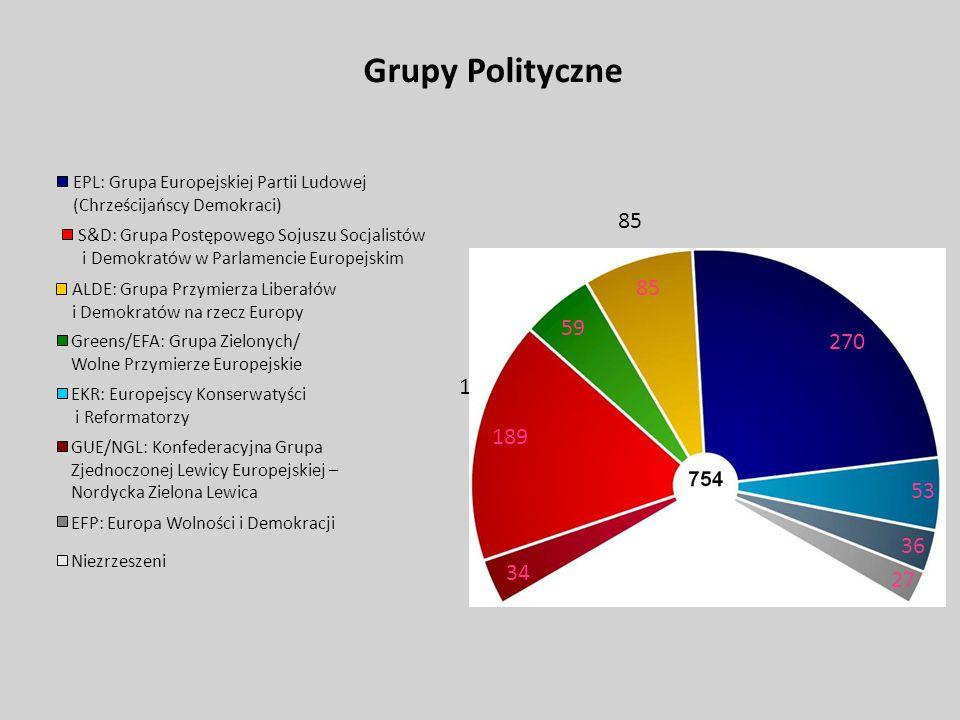 Grupy Polityczne EPL: Grupa Europejskiej Partii Ludowej. (Chrześcijańscy Demokraci) 85. S&D: Grupa Postępowego Sojuszu Socjalistów.