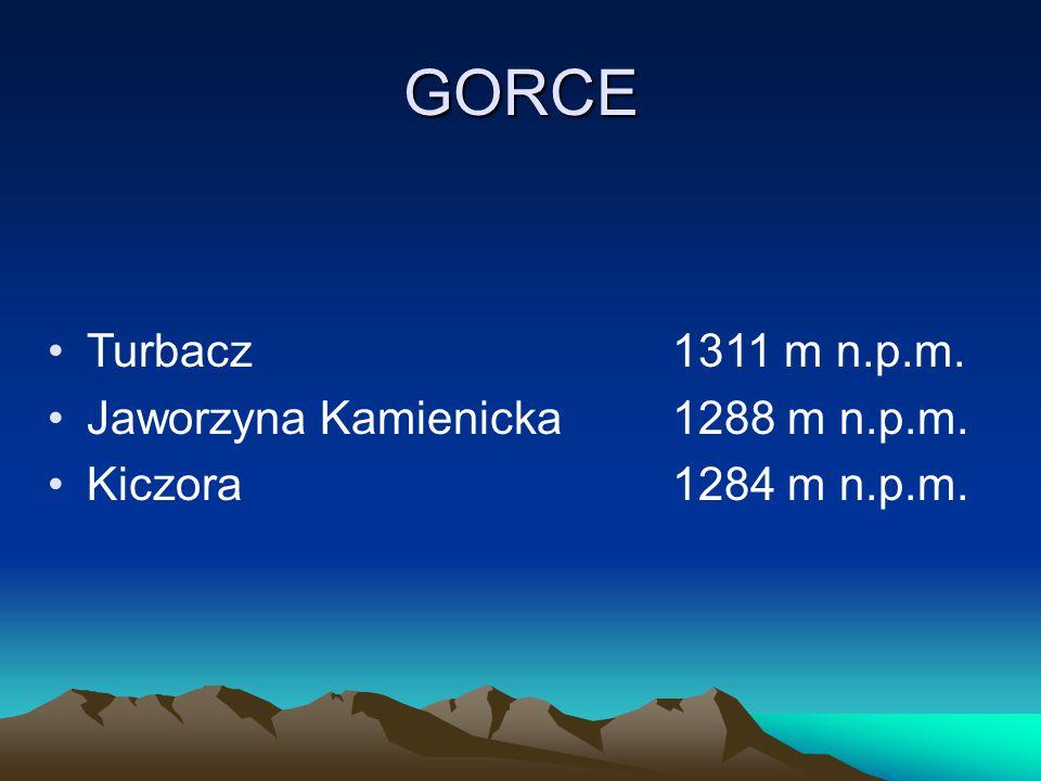 GORCE Turbacz 1311 m n.p.m. Jaworzyna Kamienicka 1288 m n.p.m.
