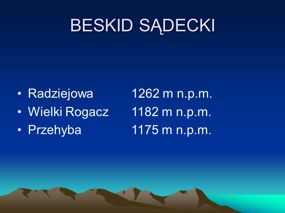 BESKID SĄDECKI Radziejowa 1262 m n.p.m. Wielki Rogacz 1182 m n.p.m.