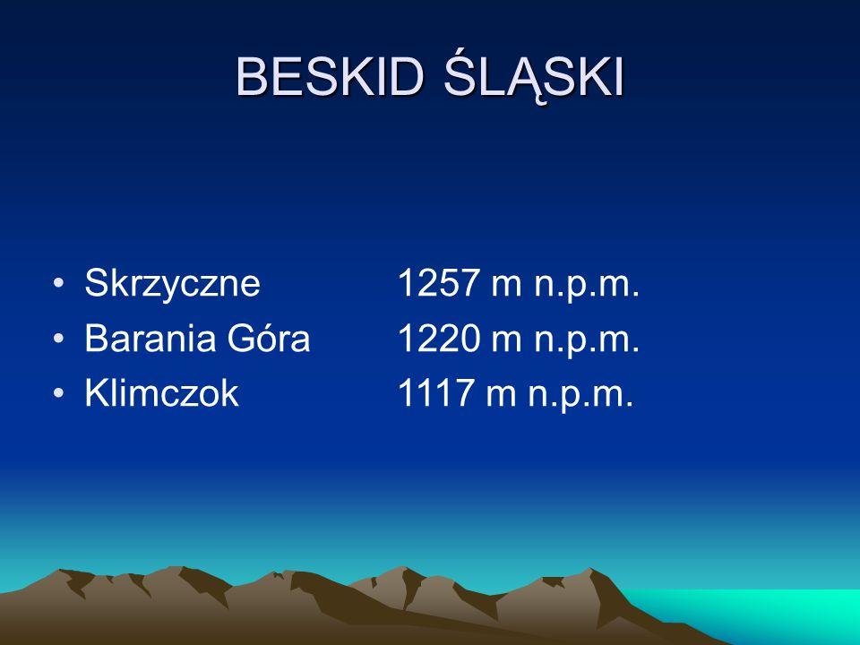 BESKID ŚLĄSKI Skrzyczne 1257 m n.p.m. Barania Góra 1220 m n.p.m.