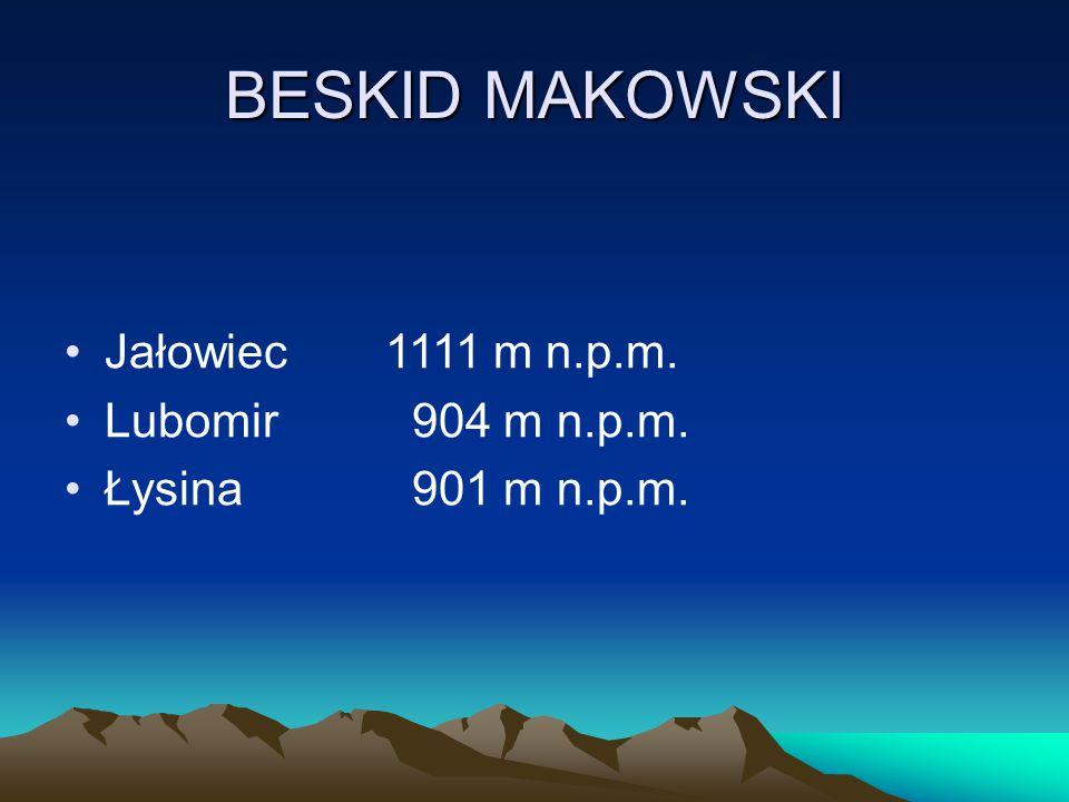 BESKID MAKOWSKI Jałowiec 1111 m n.p.m. Lubomir 904 m n.p.m.