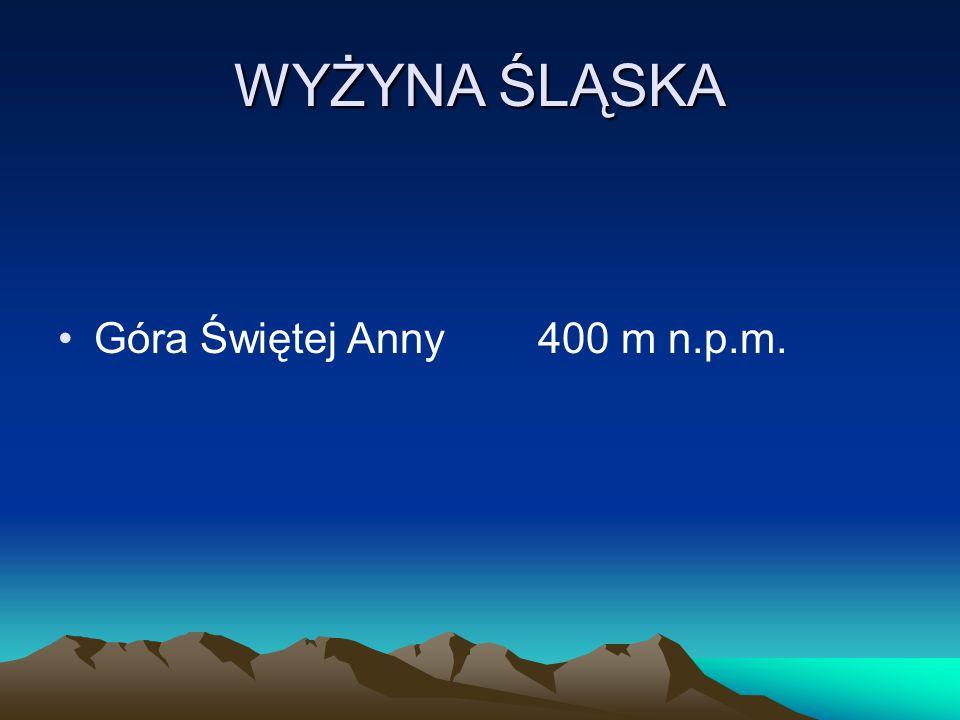 WYŻYNA ŚLĄSKA Góra Świętej Anny 400 m n.p.m.