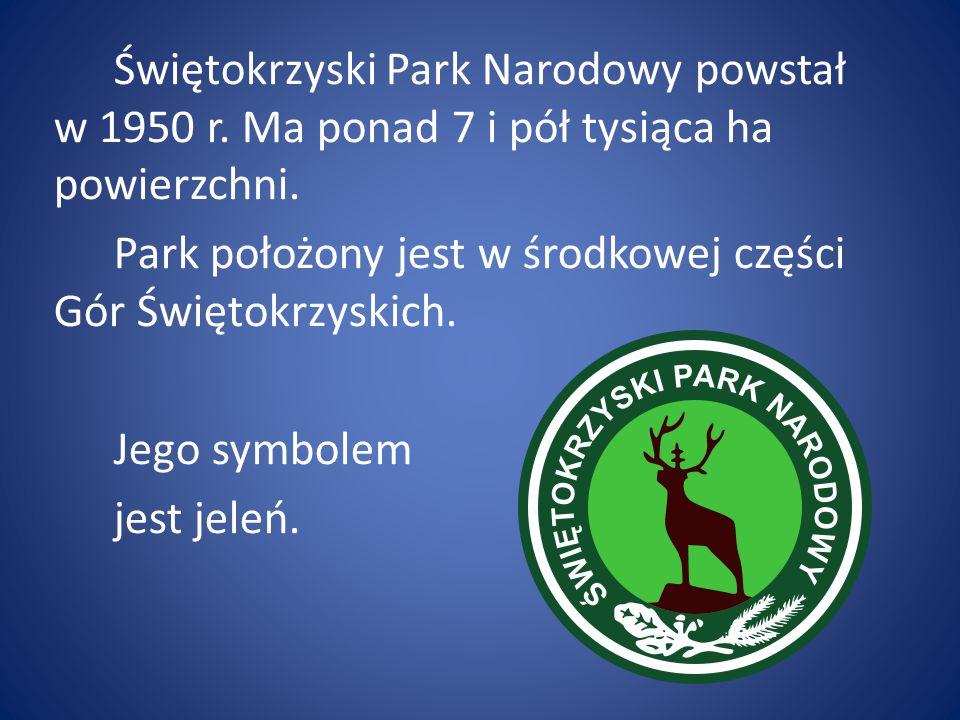 Świętokrzyski Park Narodowy powstał w 1950 r