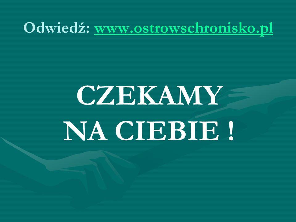 Odwiedź: www.ostrowschronisko.pl