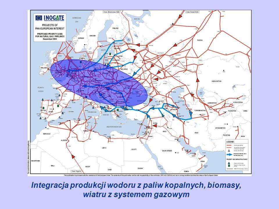 Przestrzeń Europy można podzielić na co najmniej trzy różniące się od siebie obszary. Północny ( elipsa zielona ) gdzie panuja najlepsze warunki do wykorzystania energii z biomasy i z wiatru. Srodkowy ( elipsa niebieska ) – dla której dominujące będzie dominacja węgla kamiennego i brunatnego oraz importowanego gazu z Rosji , oraz południowy ( elipsa złota ) – obszar Morza Śródziemnego, gdzie dominować może energia słoneczna i fotowoltaika, energia gazu ziemnego importowanego z Afryki i z Bliskiego Wschodu . Rola biomasy w tym obszarze jest jednak ograniczona przez brak słodkiej wody niezbednej do wegetacji. Tutaj integracja powinna iść zatem w kierunku wykorzystania odpadowego ciepła z elektrowni gazowych i atomowych ( Francja ) do odsalania wody morskiej na potrzeby produkcji biomasy. Zazielenieenie wybrzeza Morza Śródziemnegto jest najtańszą metodą sekwestracji. Przedstawiona wyzej mapa będzie jeszcze bardziej wymowna, jeśli Ukraina dołączy do Unii. Tam właśnie synergia biomasy i paliw kopalnych może być najbardziej efektywna.