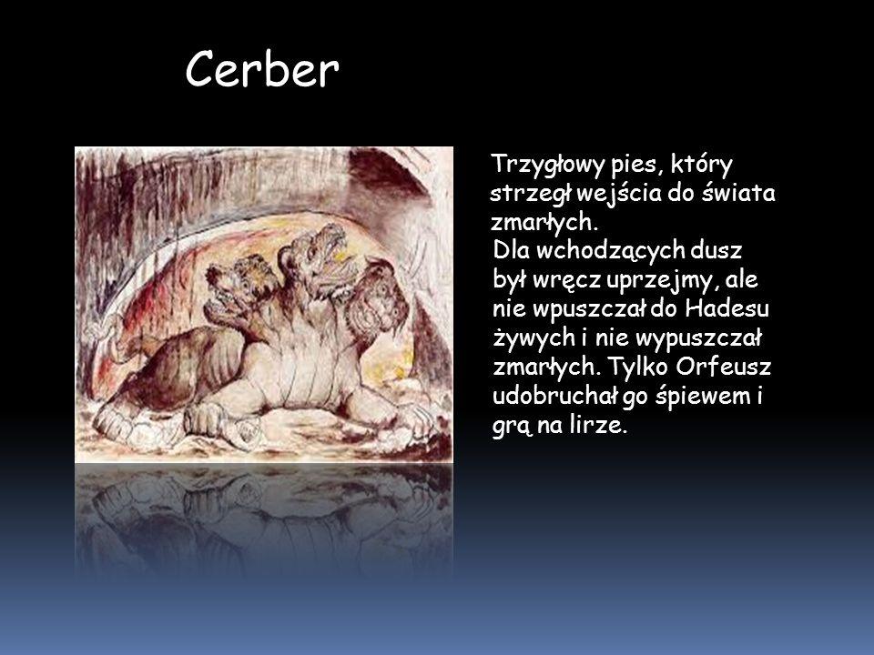 Cerber Trzygłowy pies, który strzegł wejścia do świata zmarłych.