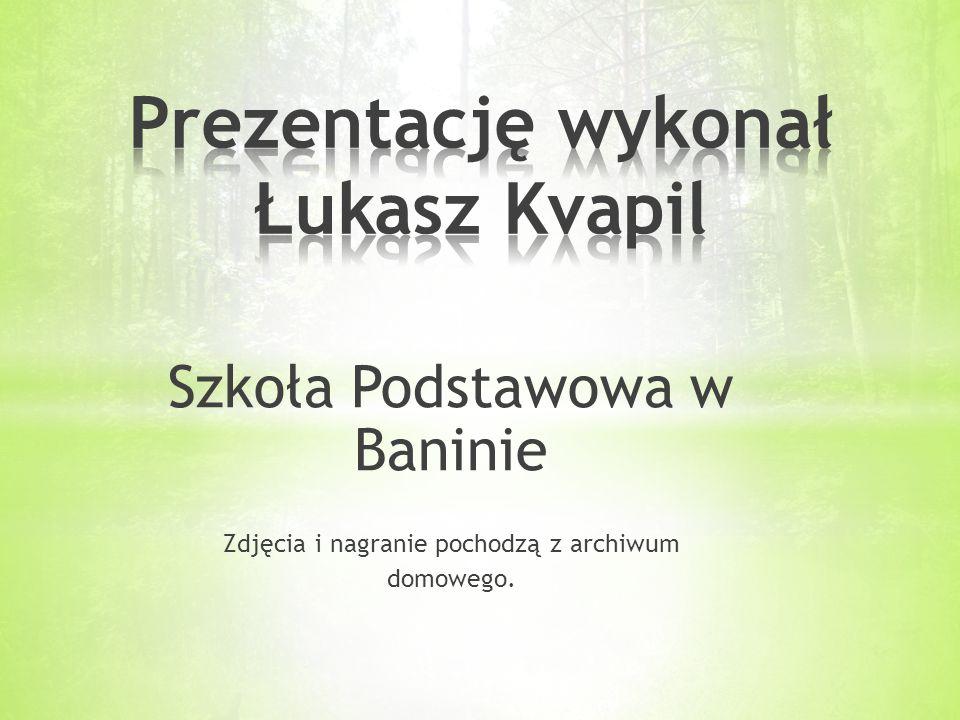 Prezentację wykonał Łukasz Kvapil