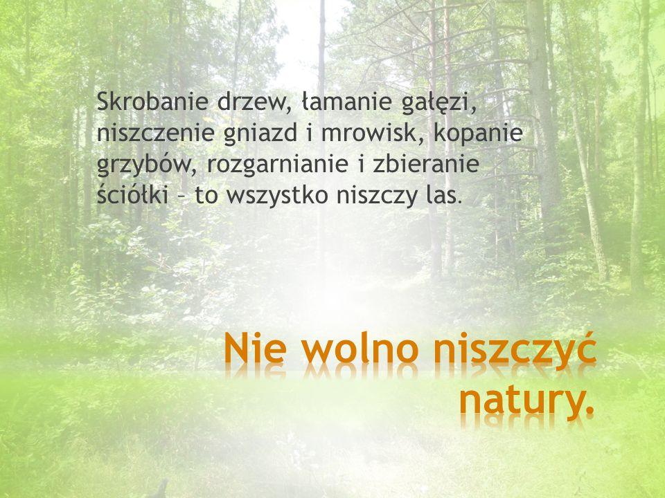 Nie wolno niszczyć natury.