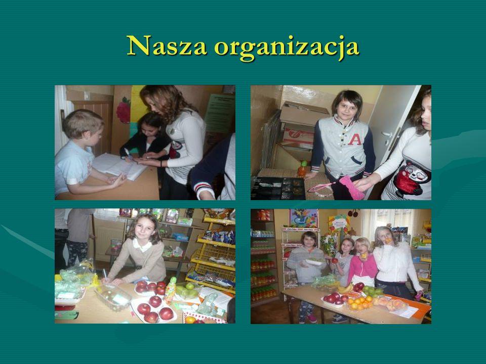 Nasza organizacja