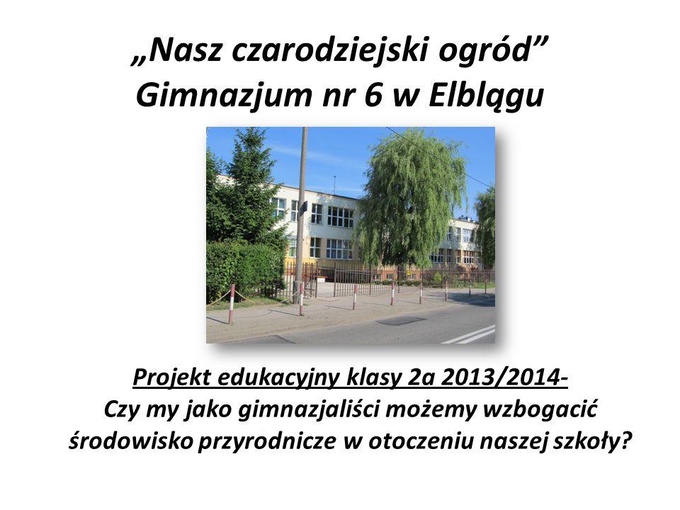 """""""Nasz czarodziejski ogród Gimnazjum nr 6 w Elblągu"""