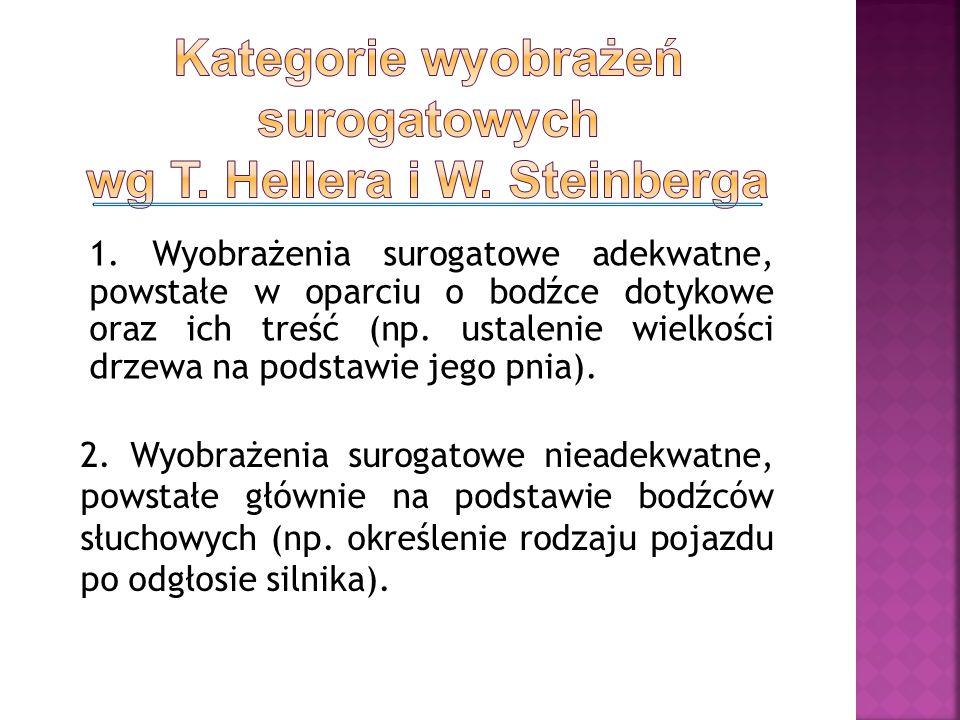 Kategorie wyobrażeń surogatowych wg T. Hellera i W. Steinberga