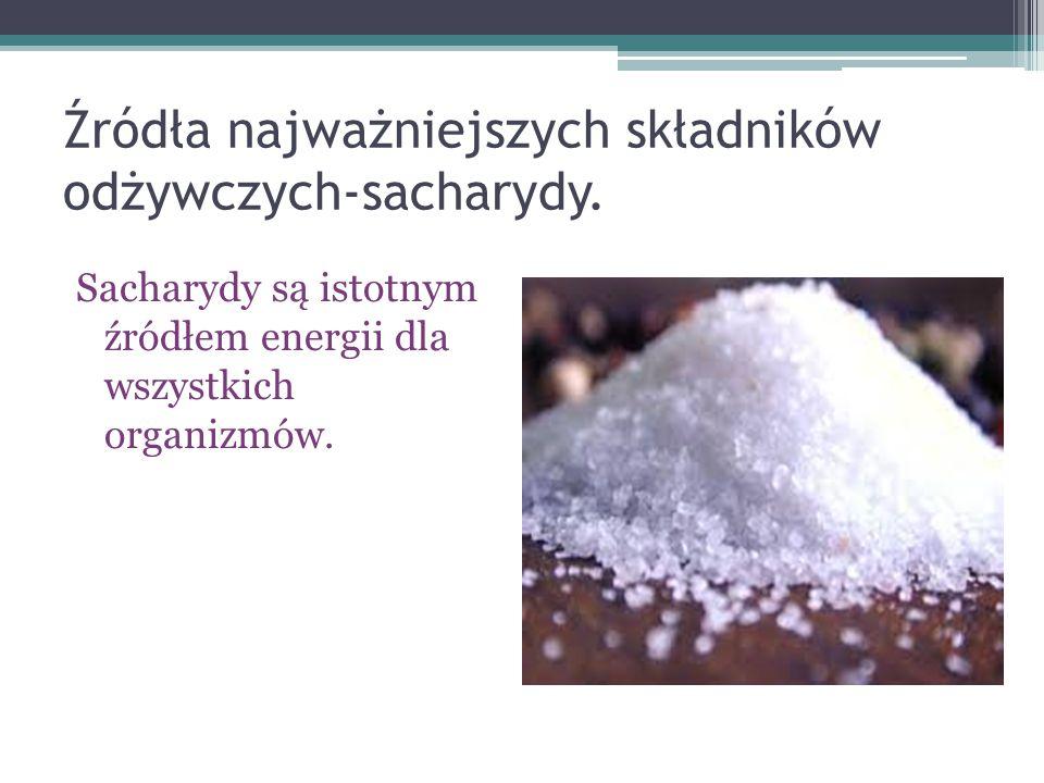 Źródła najważniejszych składników odżywczych-sacharydy.