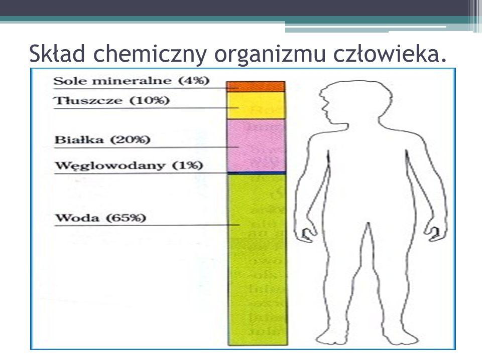 Skład chemiczny organizmu człowieka.