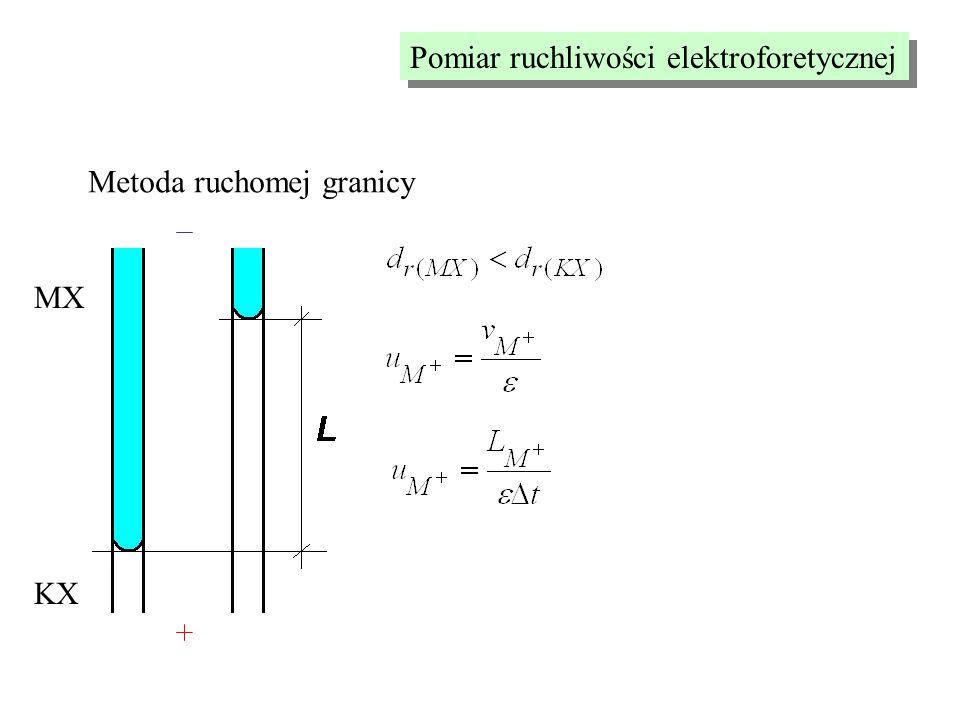 Pomiar ruchliwości elektroforetycznej