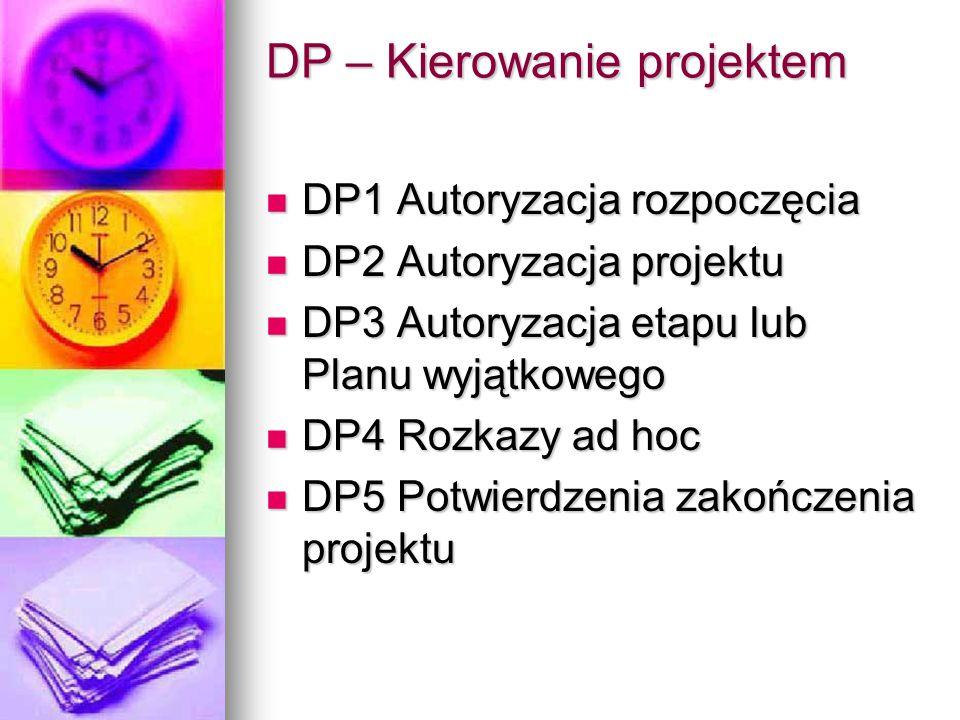 DP – Kierowanie projektem