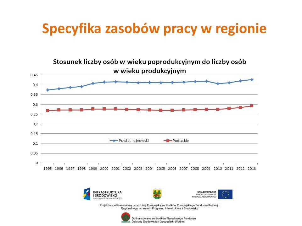 Specyfika zasobów pracy w regionie