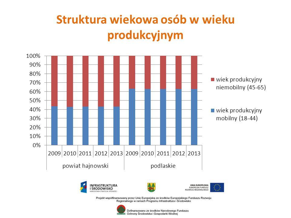 Struktura wiekowa osób w wieku produkcyjnym