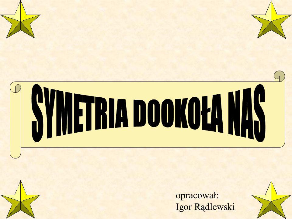SYMETRIA DOOKOŁA NAS opracował: Igor Rądlewski