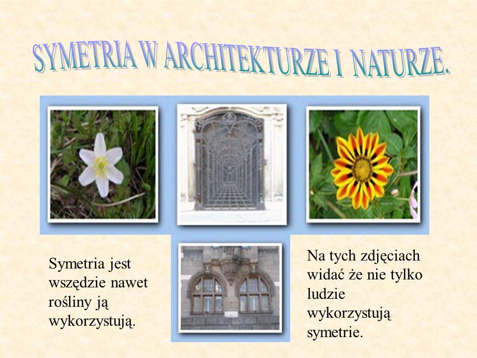 SYMETRIA W ARCHITEKTURZE I NATURZE.