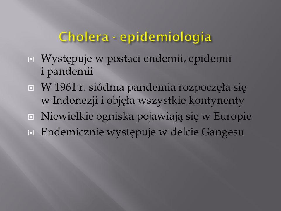 Cholera - epidemiologia