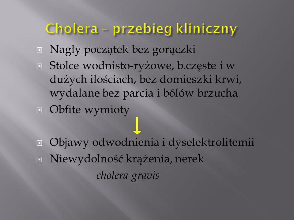 Cholera – przebieg kliniczny
