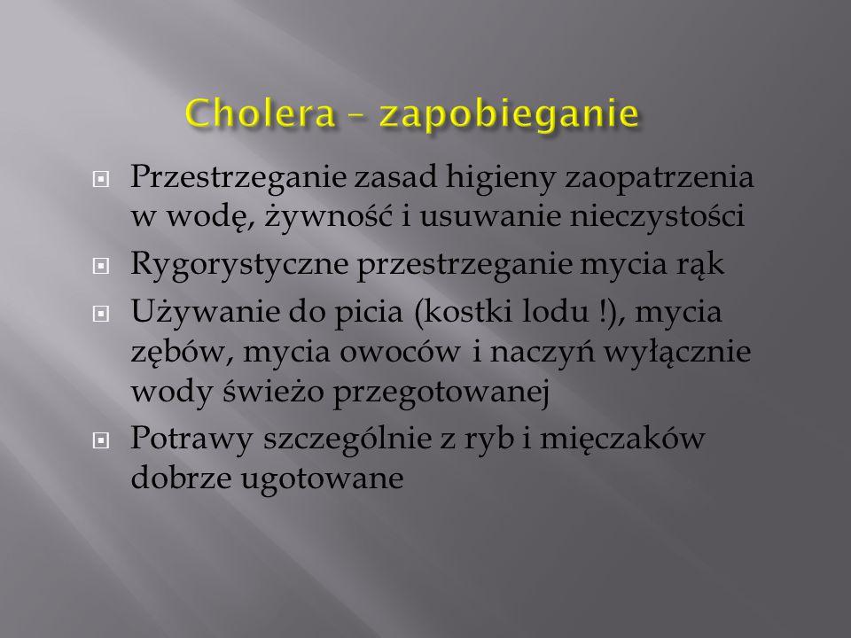 Cholera – zapobieganie