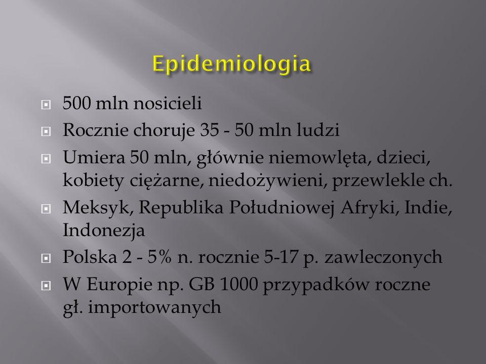 Epidemiologia 500 mln nosicieli Rocznie choruje 35 - 50 mln ludzi