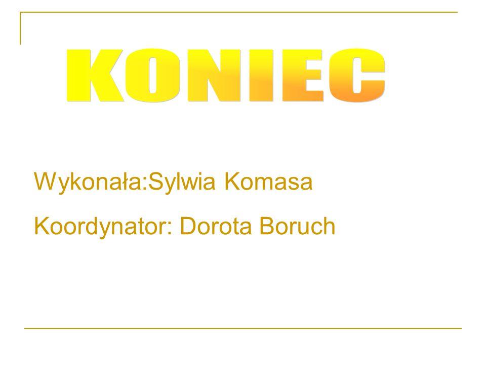 KONIEC Wykonała:Sylwia Komasa Koordynator: Dorota Boruch