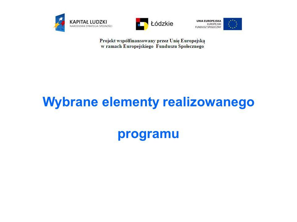 Wybrane elementy realizowanego programu