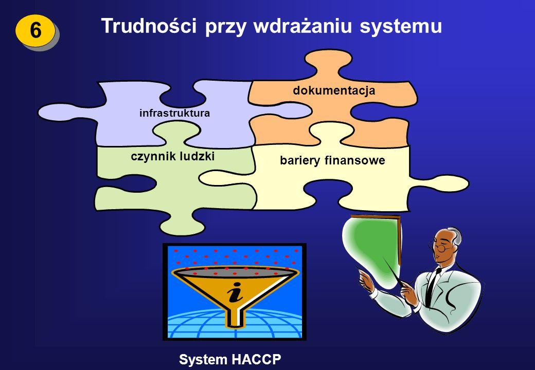 Trudności przy wdrażaniu systemu