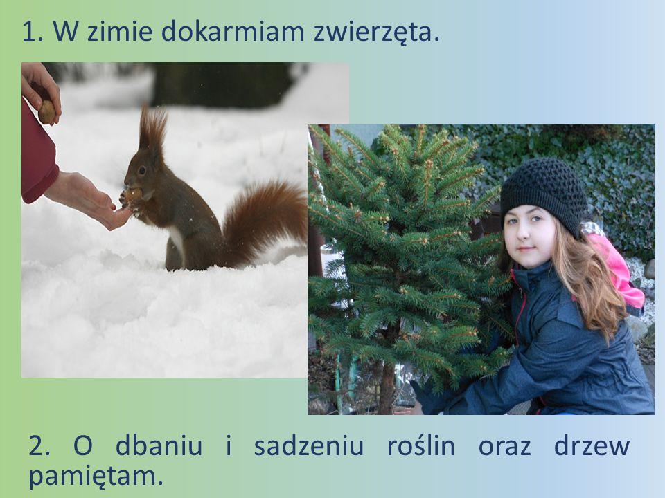 1. W zimie dokarmiam zwierzęta.