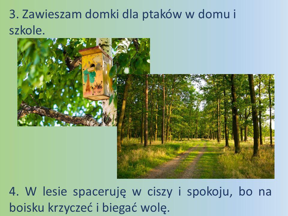 3. Zawieszam domki dla ptaków w domu i szkole.
