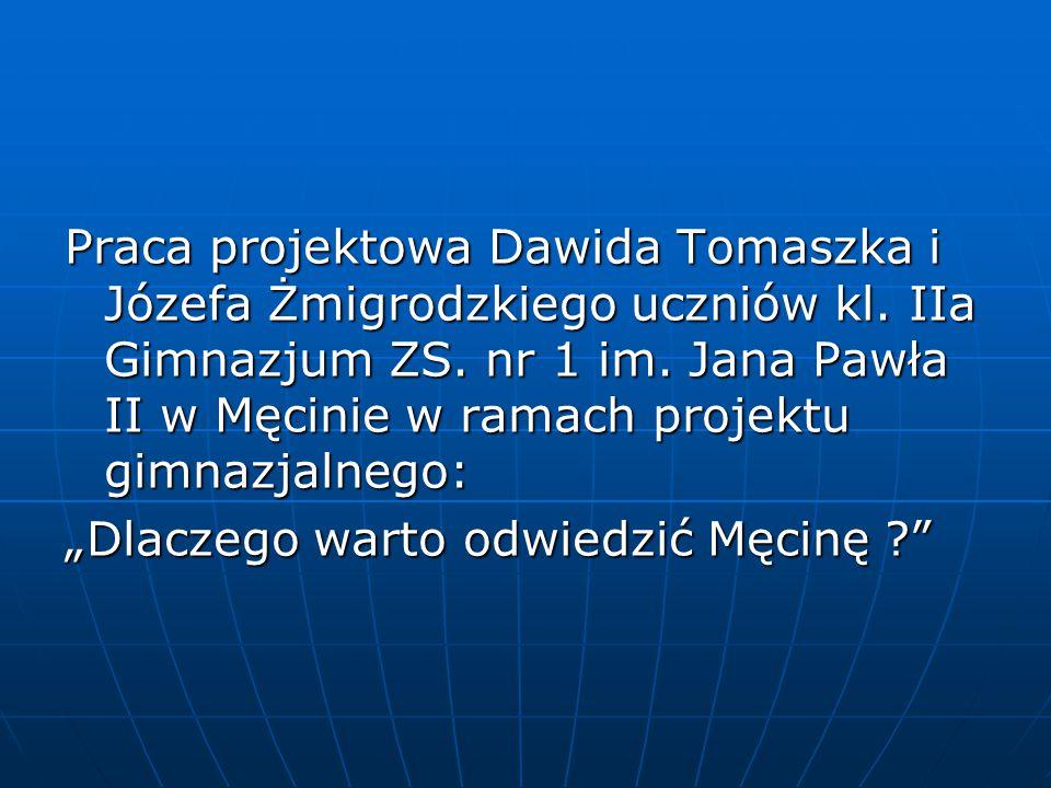Praca projektowa Dawida Tomaszka i Józefa Żmigrodzkiego uczniów kl