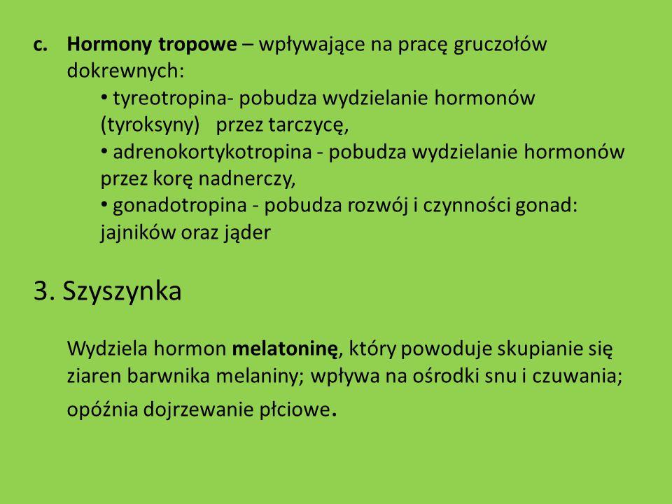 Hormony tropowe – wpływające na pracę gruczołów dokrewnych: