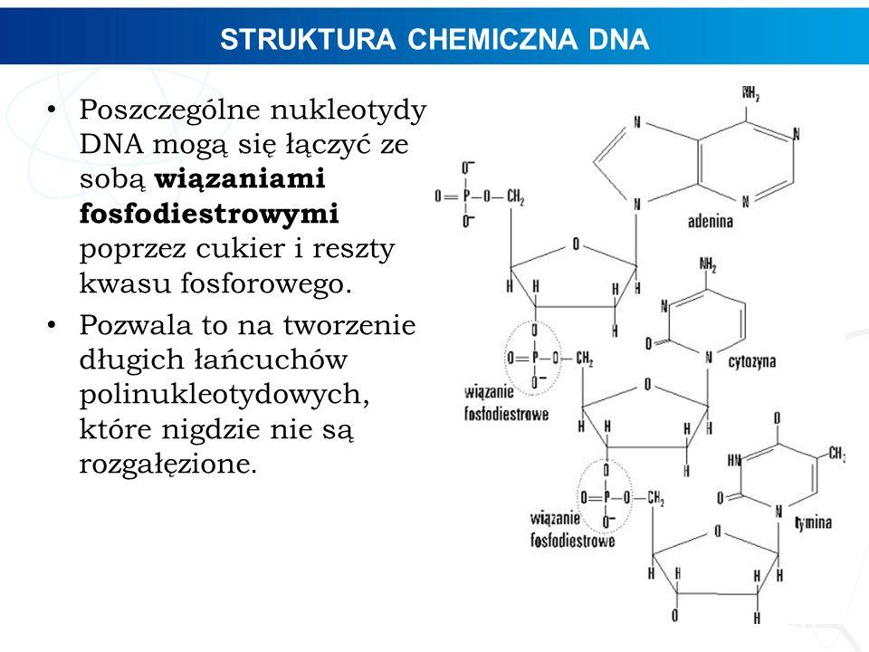 STRUKTURA CHEMICZNA DNA