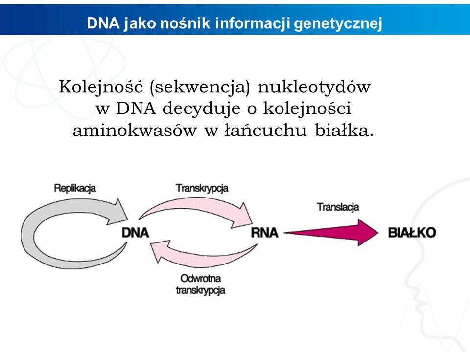 DNA jako nośnik informacji genetycznej