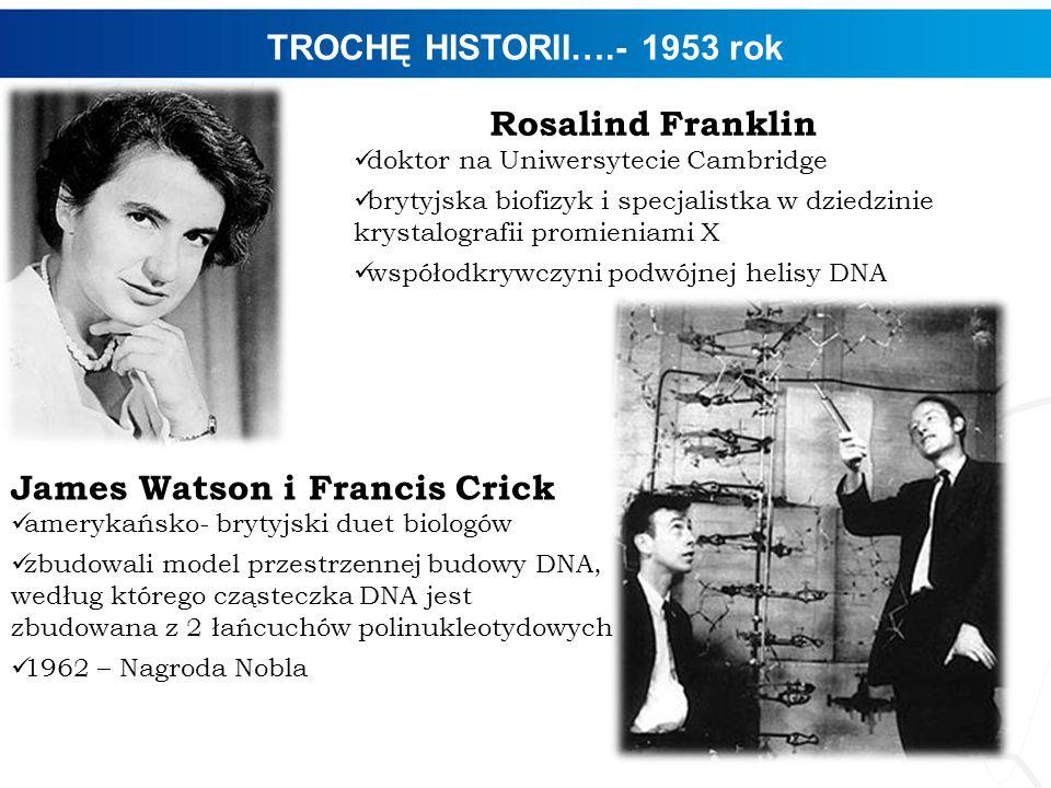 James Watson i Francis Crick
