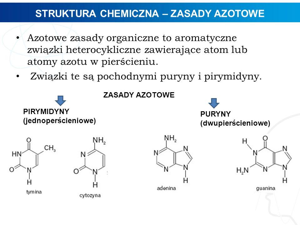 STRUKTURA CHEMICZNA – ZASADY AZOTOWE
