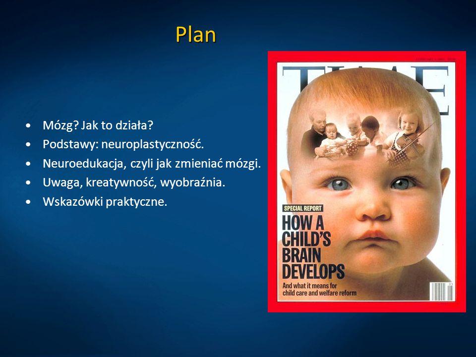 Plan Mózg Jak to działa Podstawy: neuroplastyczność.