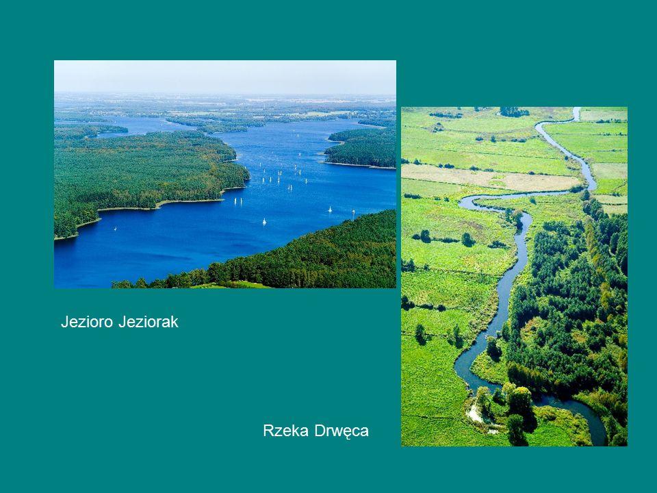 Jezioro Jeziorak Rzeka Drwęca